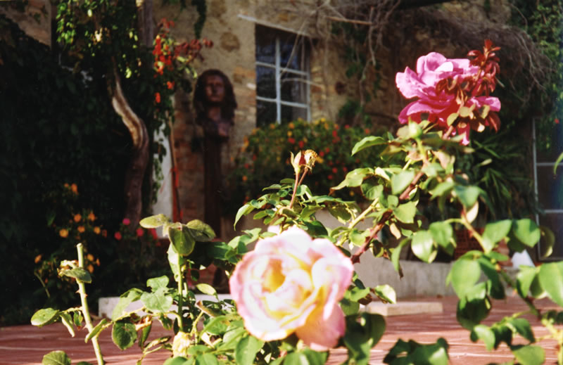 Roses in the gardens of La Rogaia.